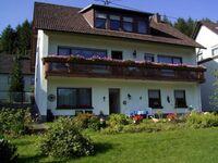 Ferienhaus Raabe, Schöne Terrassenwohnung mit Gartennutzung in Birresborn - kleines Detailbild