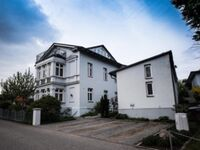 Villa Franz, Seestern in Heringsdorf (Seebad) - kleines Detailbild