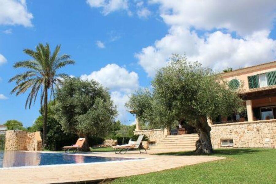 Pool, Garten, Haus mit großer Terrasse
