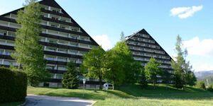 Apartment Ferienglück in Bad Mitterndorf - kleines Detailbild