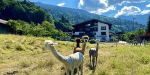AlpenApart Haus Engstler in Schruns-Tschagguns - kleines Detailbild
