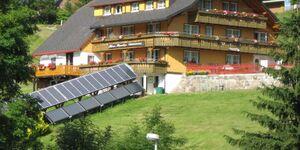 Haus Monika - Ferienwohnung 5 in Todtnauberg - kleines Detailbild