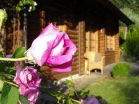 Ferienhaus HYMYHUULI in Horn-Bad Meinberg - kleines Detailbild