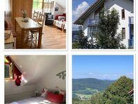 Ferienwohnung im Sonnenwald - Fewo 46 in Schöfweg-Langfurth - kleines Detailbild