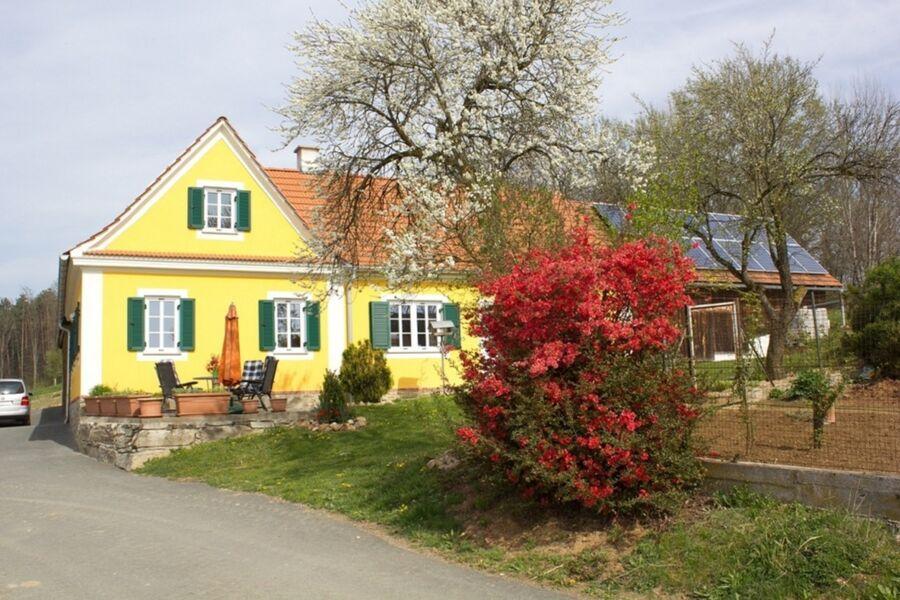 Frühlingserwachen in der Öko- Region Kaindorf
