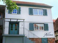 Mi-Adlerhorst - Boarding House, Adlerhorst-Appartement 2 in Michelstadt - kleines Detailbild