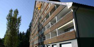 Apartment Urlaubstraum, Appartement Urlaubstraum in Bad Mitterndorf - kleines Detailbild