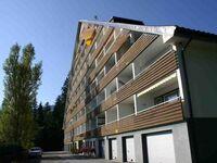 Appartement Urlaubstraum in Bad Mitterndorf - kleines Detailbild