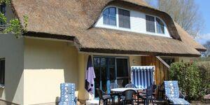 Familienfreundliches Reetdachhaus Weißdorn 2, DHH Weißdorn 2 in Poseritz OT Puddemin - kleines Detailbild