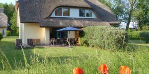 Behagliches Reetdachhaus Eibe 1: Sauna, Kamin, 8 Personen, DHH Eibe 1 in Poseritz OT Puddemin - kleines Detailbild