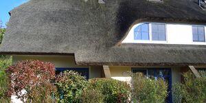 Reetdachhaus Malve 3 im Feriendorf Puddeminer Wiek, RMH Malve 3 in Poseritz OT Puddemin - kleines Detailbild