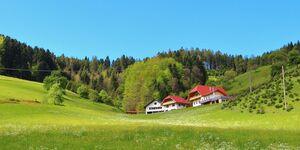 Ferienwohnung Stinneshof in Oberharmersbach - kleines Detailbild
