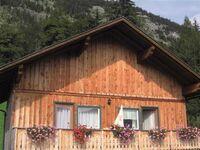 Ferienhaus Loitzl Gerald, Ferienhaus in Altaussee - kleines Detailbild