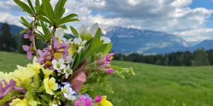 Obersdorfer Hof, Studio in Bad Mitterndorf - kleines Detailbild