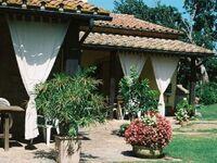 Poggio dell'Olivo - Casa B in Pitigliano - kleines Detailbild