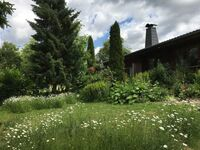 Ferienwohnungen Finnisches Blockhaus, Ferienwohnung Anika in Edertal-Kleinern - kleines Detailbild