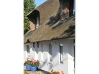 Ferienwohnungen Linderhof-Sylt, App. 10 in Sylt - Westerland - kleines Detailbild