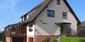 Ferienwohnung Haus Windeck in Friedenweiler-Rötenbach - kleines Detailbild