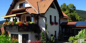 Ferienwohnung in Frankenblick OT Rauenstein - kleines Detailbild