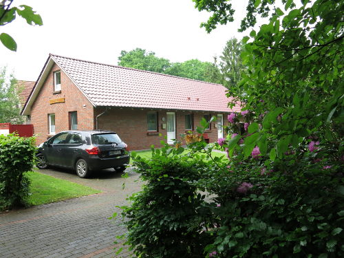 Single wohnung varel