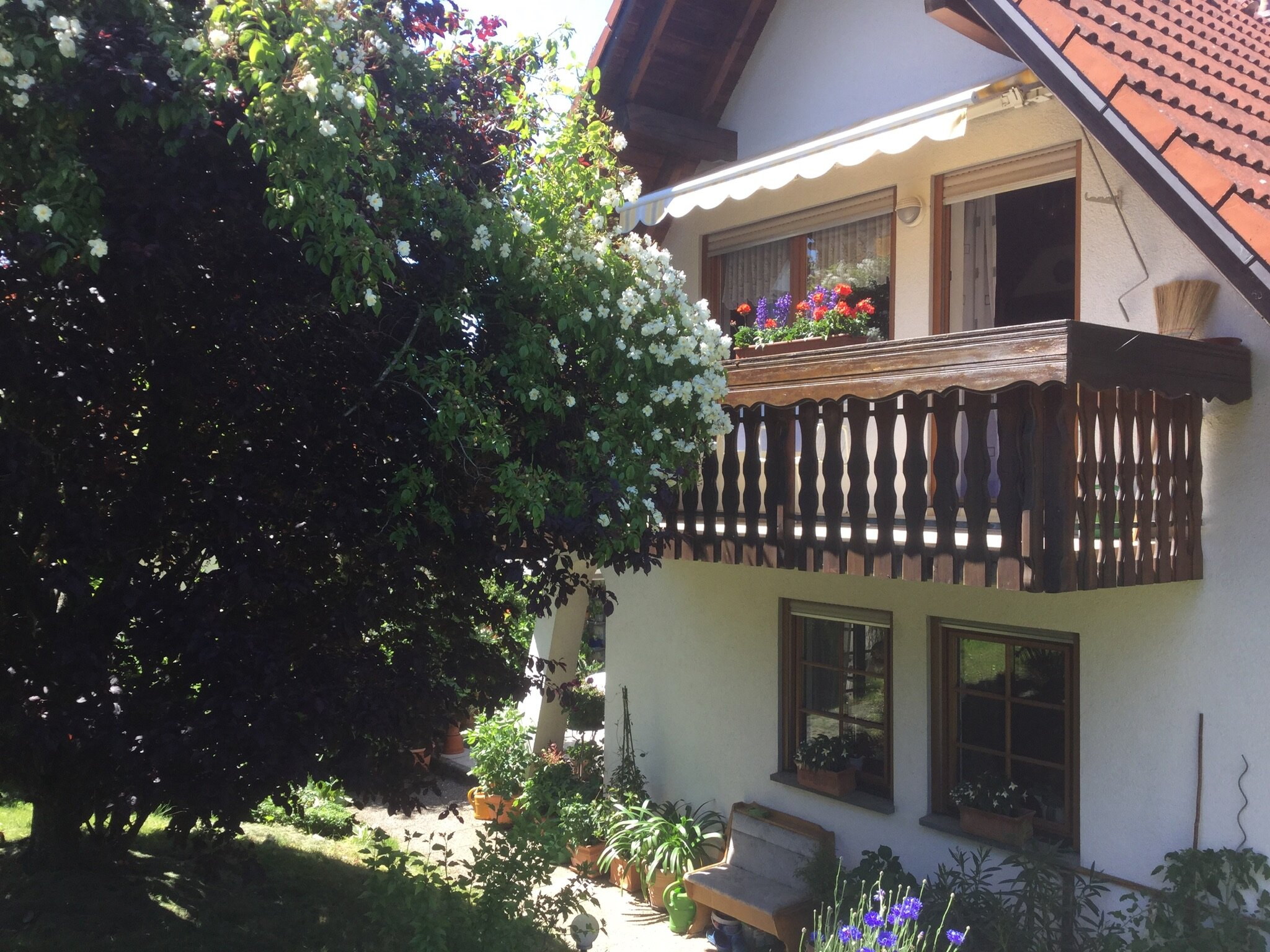 unser blumengeschmückter Balkon