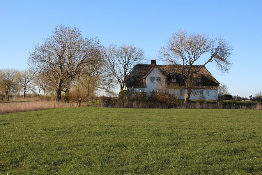 Der Blick auf's Haus