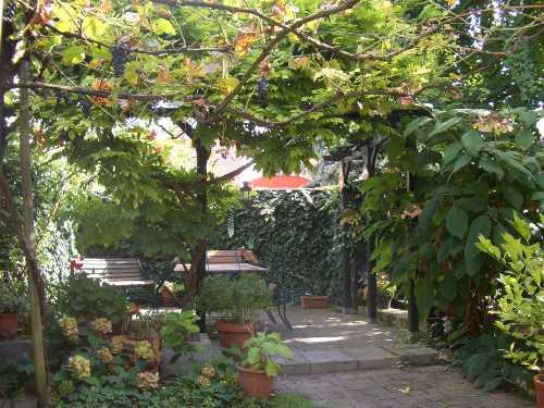 Wohnung Speyer Und Umgebung