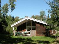 Ferienhaus in Hasle, Haus Nr. 14126 in Hasle - kleines Detailbild