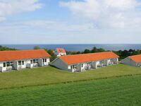 Ferienhaus in Allinge, Haus Nr. 26629 in Allinge - kleines Detailbild
