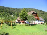 Bühltonihof in Oppenau - kleines Detailbild