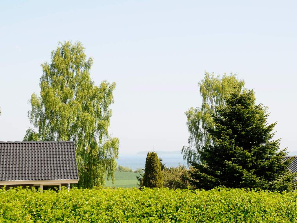 Ferienhaus in Hejls, Haus Nr. 29426 - Umgebungsbild