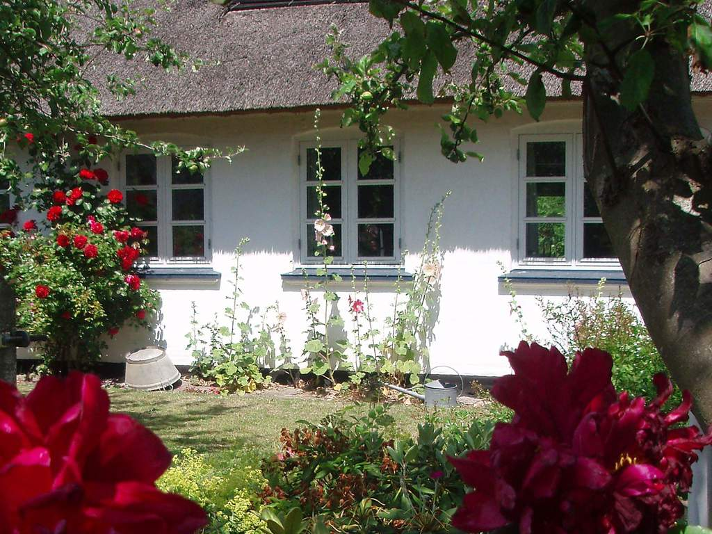 Ferienhaus in Marstal, Haus Nr. 30461 - Umgebungsbild