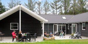 Ferienhaus in Blåvand, Haus Nr. 33555 in Blåvand - kleines Detailbild