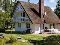Ferienhaus in Vejers Strand, Haus Nr. 35223 in Vejers Strand - kleines Detailbild
