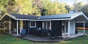 Ferienhaus in Roslev, Haus Nr. 38438 in Roslev - kleines Detailbild