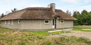 Ferienhaus in Vejers Strand, Haus Nr. 40201 in Vejers Strand - kleines Detailbild