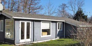 Ferienhaus in Stege, Haus Nr. 41966 in Stege - kleines Detailbild