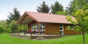 Ferienhaus in Roslev, Haus Nr. 42351 in Roslev - kleines Detailbild