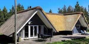 Ferienhaus in Blåvand, Haus Nr. 42749 in Blåvand - kleines Detailbild