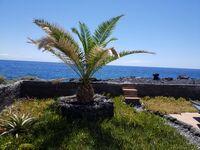 Casa Vista Mar El Remo in El Remo - kleines Detailbild