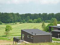 Ferienhaus in Aabenraa, Haus Nr. 42909 in Aabenraa - kleines Detailbild