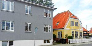Ferienhaus in Skagen, Haus Nr. 43463 in Skagen - kleines Detailbild