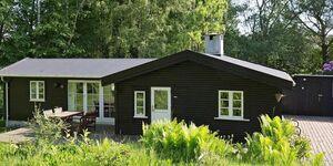 Ferienhaus in Hundested, Haus Nr. 53124 in Hundested - kleines Detailbild