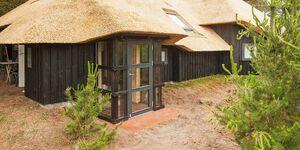 Ferienhaus in Blåvand, Haus Nr. 82351 in Blåvand - kleines Detailbild