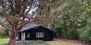Ferienhaus in Hemmet, Haus Nr. 83122 in Hemmet - kleines Detailbild