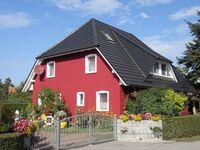 Haus Schumann - Ferienwohnung No.30 in Wieck am Darß - kleines Detailbild