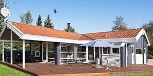Ferienhaus in Slagelse, Haus Nr. 94947 in Slagelse - kleines Detailbild
