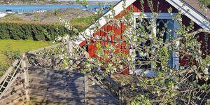 Ferienhaus in Torslanda, Haus Nr. 41380 in Torslanda - kleines Detailbild