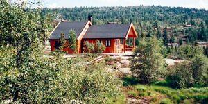 Ferienhaus in treungen, Haus Nr. 33177 in treungen - kleines Detailbild