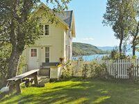 Ferienhaus in Skatvik, Haus Nr. 42885 in Skatvik - kleines Detailbild
